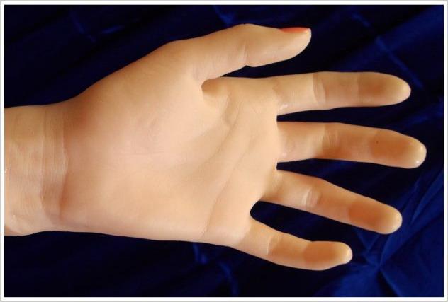 Handfläche von Sexpuppe Tara